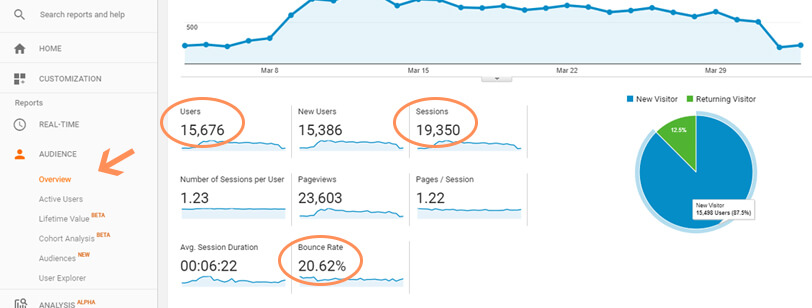 Google Analytics Users and Sessions and Bounce Rate - Audience Overview Example